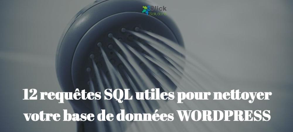 12 requêtes SQL utiles pour nettoyer votre base de données WORDPRESS